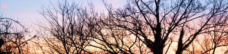 Morgenröte-hinterm-Haus