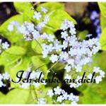 Postkarte_02.jpg