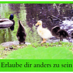 Postkarte_16.jpg